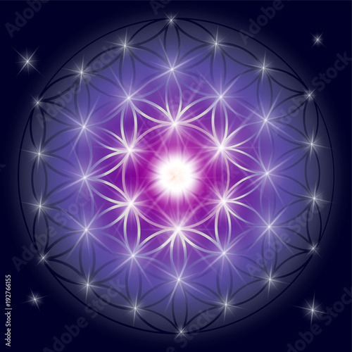 Sacred geometry illustration: Flower of Life, also known as