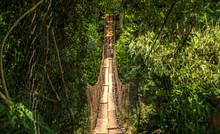 Wood Bridge National Park Brazil