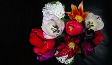 Spring Bouquet Of Tulips And S...