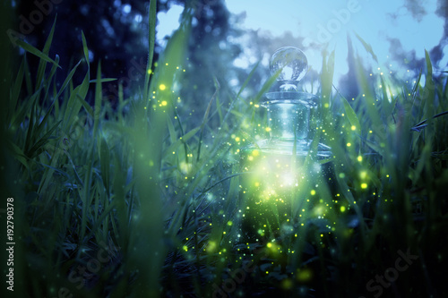 Photo  Magical fairy dust potion in bottle in the forest.