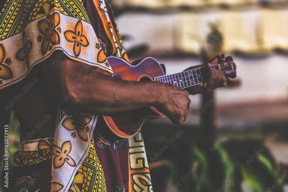 Fototapeta musicien de ukulele