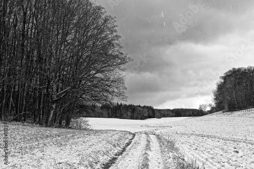 Schwarzweiß Foto einer Landschaft im Winter mit beginnendem Schneefall, eine Wiese mit einem Wald im Hintergrund und einem Feldweg, der zieht sich mit Kurven zum Horizont hin © si2016ab