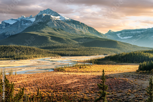 Foto op Plexiglas Donkergrijs Saskatchewan River Crossing during Autumn golden hour of the Icefields Parkway