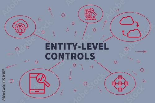Business illustration showing the concept of entity-level controls Fototapete