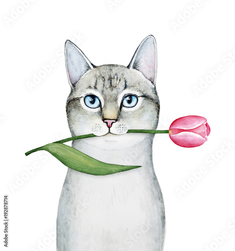 Cat Character Portrait Holding A Tulip Tender Pastel Colors Green Leaves