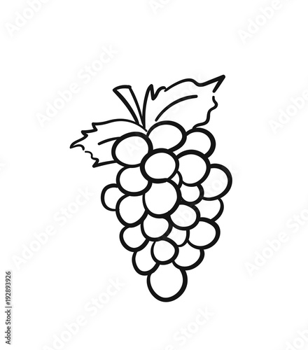 Leinwand Poster Bunch of grapes with leaf sketch icon for web, mobile and infographics