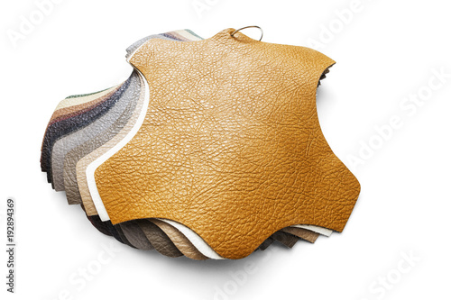 Fotomural Samples of artificial leather