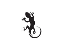 Lizard Animals Logo And Symbol...
