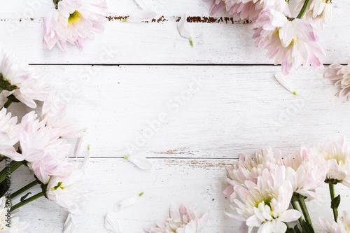 Cadres-photo bureau Fleuriste C'est le Printemps, Printemps sur Fond coloré