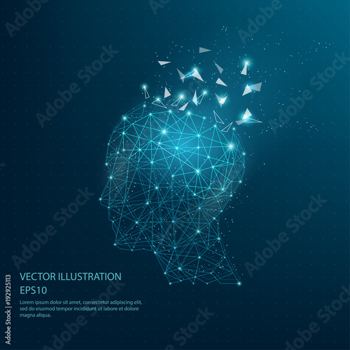 Digitally drawn thinkers head and brain low poly wire frame. Fototapet