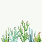 Watercolor cactus vector composition - 192928361