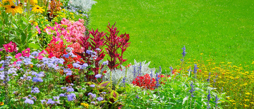 Summer flower bed and green lawn. Wide photo.