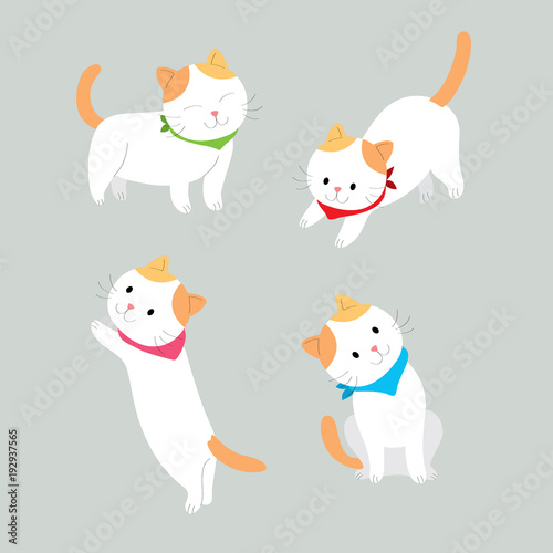 Cartoon Cute Actions Orange And White Cat Vector Grey Background Buy This Stock Vector And Explore Similar Vectors At Adobe Stock Adobe Stock