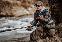 Fishing Trout Stream Creek