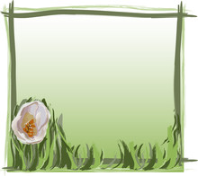 Spring Background With White T...