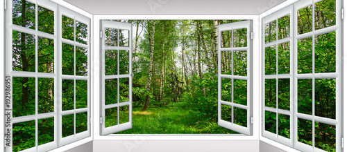 Acrylic Prints Green sunrise view from the window