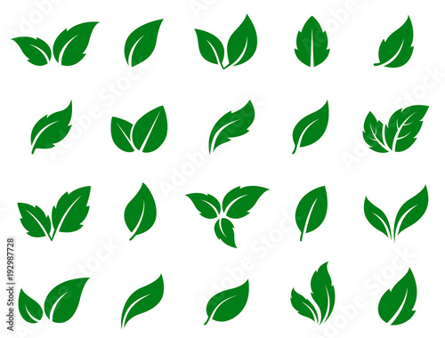 set of green leaves Wall mural