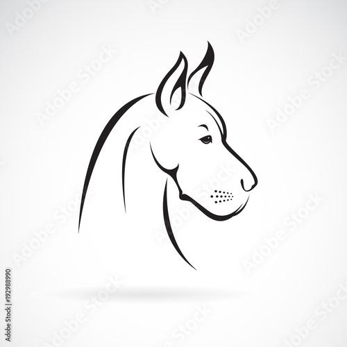 Fototapeta Vector of a dog head (Great Dane or German Mastiff or Danish Hound) on white background. Pet. Animal. Easy editable layered vector illustration. obraz