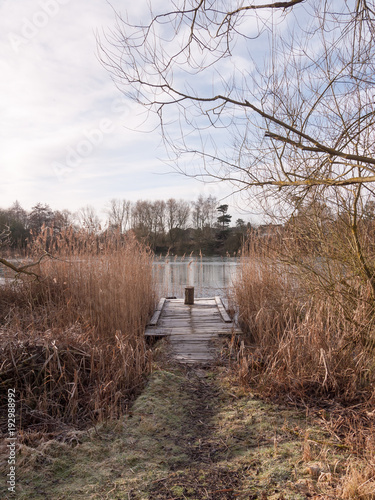 In de dag Cappuccino cold lake autumn winter landscape pontoon scene wooden stump reeds