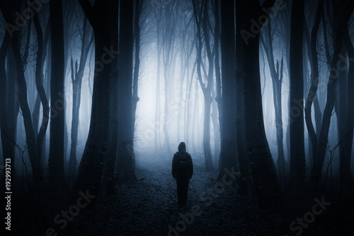 Fotografia mysterious figure in dark fantasy forest at night
