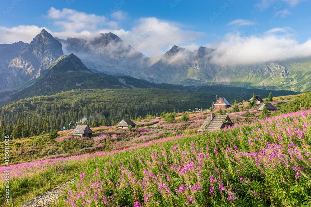Fototapety, obrazy: Tatry, pejzaż górski