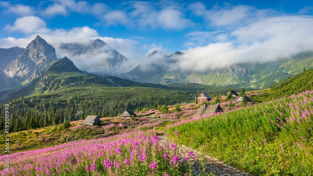 Fototapety, obrazy: Tatra mountains landscape