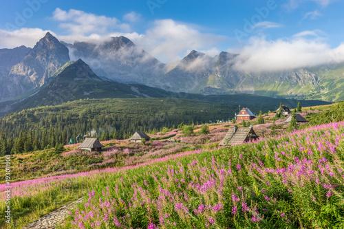 Fototapeta Tatry, pejzaż górski obraz