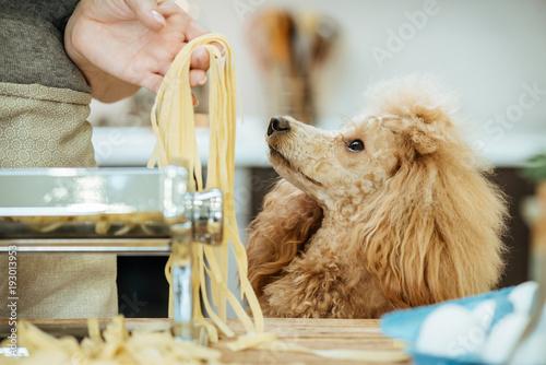 Woman's hands use a pasta cutting machine Fototapet