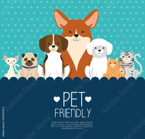dogs and cats pets friendly vector illustration design Canvas Print