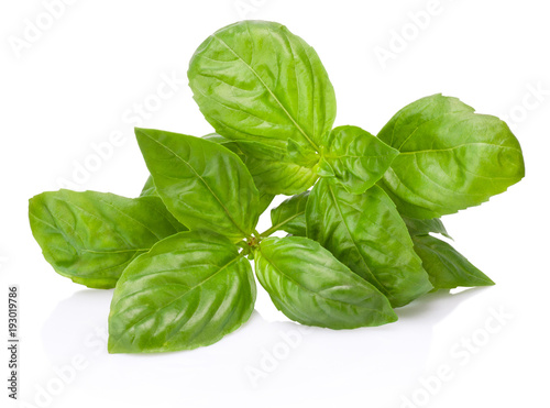 Fotografía  Fresh green basil herb leaves isolated on white background