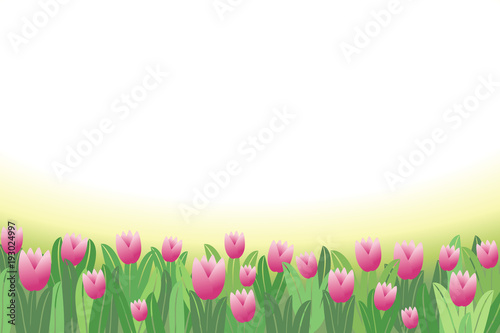 Spring flowers tulips horizontal border background vector spring flowers tulips horizontal border background vector illustration 1 mightylinksfo