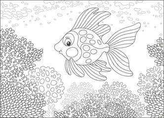 Tropical gold fish swimming over corals, a black and white vector illustration in cartoon style for a coloring book