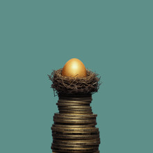 A Golden Egg In A Nest On A Pi...