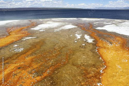Fototapeta Bacterial mats below Black Pool, stretching toward Yellowstone Lake, Yellowstone National Park, Wyoming, USA obraz na płótnie