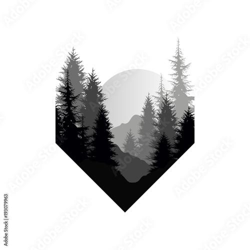 piekny-krajobraz-natura-z-sylwetkami-drzew