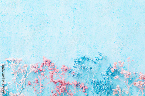 Wedding Flower Border On Blue Pastel Background Top View Beautiful