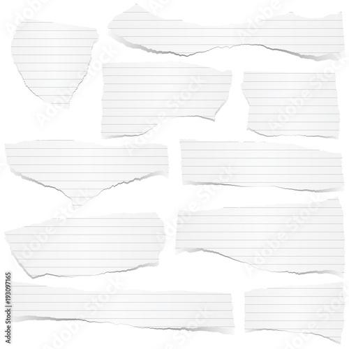Fotografie, Obraz  collection scrap of paper