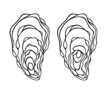 Oyster Set. Isolated Oyster  O...