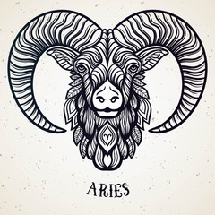 FototapetaBeautiful line art filigree zodiac symbol. Black sign on vintage background.Elegant jewelry tattoo.Engraved horoscope symbol.Doodle mystic drawing with calligraphy lettering.Aries