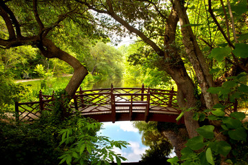 Fototapeta Mosty A romantic colonial bridge in Williamsburg Virginia immersed in a green woodland with a beautiful reflecting water pond.