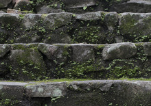 Old Wet Stone Steps Filled Wit...