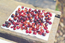 Red Cherry Coffee Beans Drying...