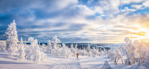 Cross-country skiing in Scandinavian winter wonderland at sunset