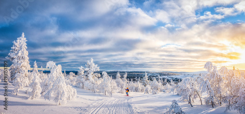 Spoed Fotobehang Europese Plekken Cross-country skiing in Scandinavian winter wonderland at sunset