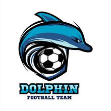 Dolphin Football Logo Vector