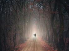 Der Weg In Das Licht