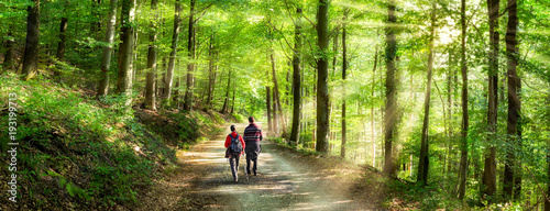 Aktivurlaub im Frühling bei einer Wanderung im Wald Fototapeta
