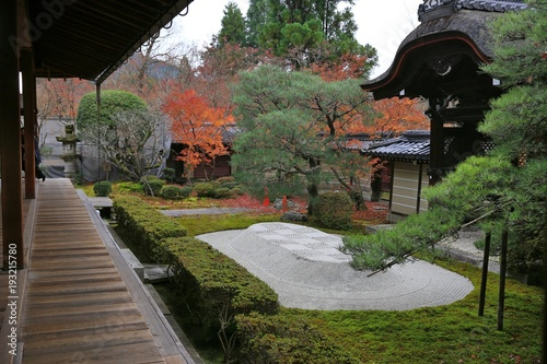 Plakat czerwone liście klonu w świątyni buddyzmu jesienią