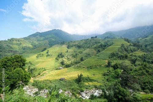 Staande foto Bleke violet Rice fields on terraced of Sapa, Sapa District, Lao Cai Province, Northwest Vietnam
