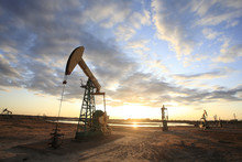 Pumpjacks, The Sunset Of Daqing Oil Field
